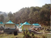 Hotels in Barkot
